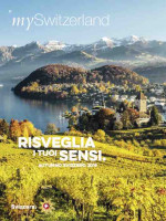 ONLINE: Autunno in Svizzera 2019 (international)